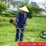 Dịch vụ cắt cỏ An thành Phát